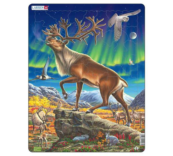 Bilde av Puslespill Reinsdyr i nordlys 60 brikker